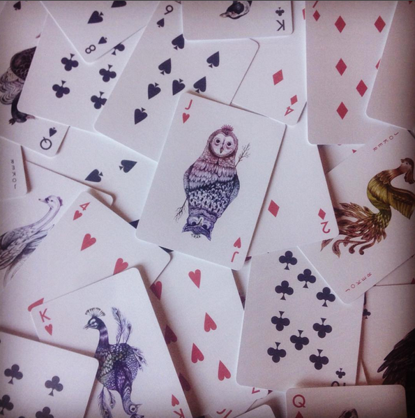 Aves_cards