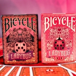BICYCLE LADYBUG cards. Small and lovely bugs are everywhere
